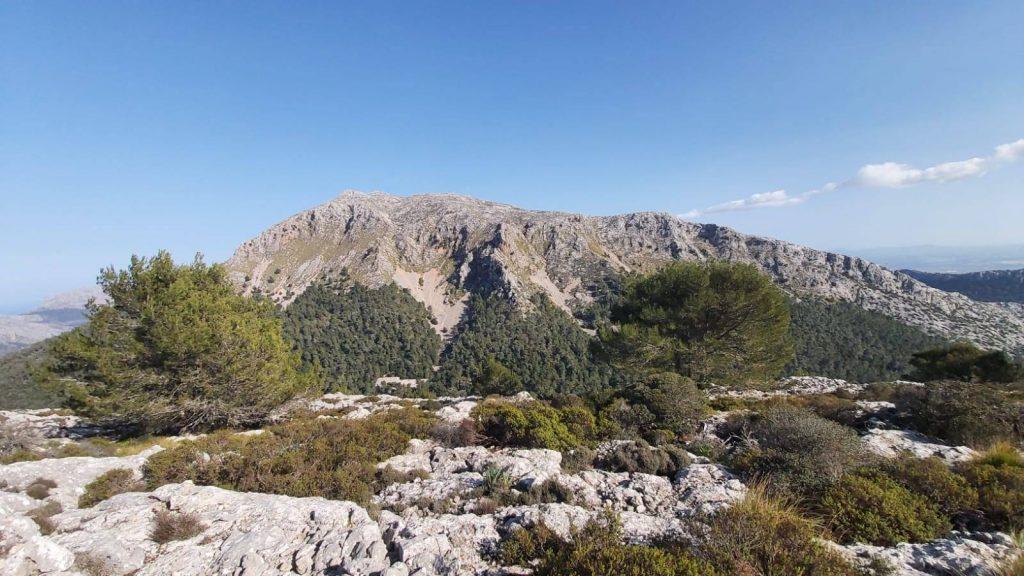 Puig Tomir-Moleta de Binifaldó