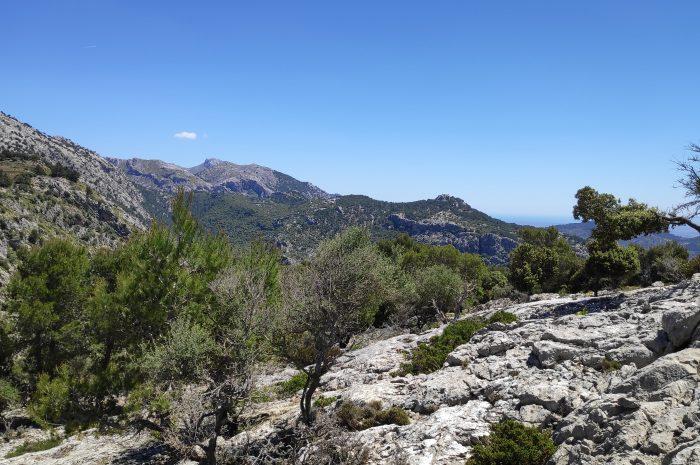 FONT DE SA PARRA por Comassema y el Pas de Caçadors
