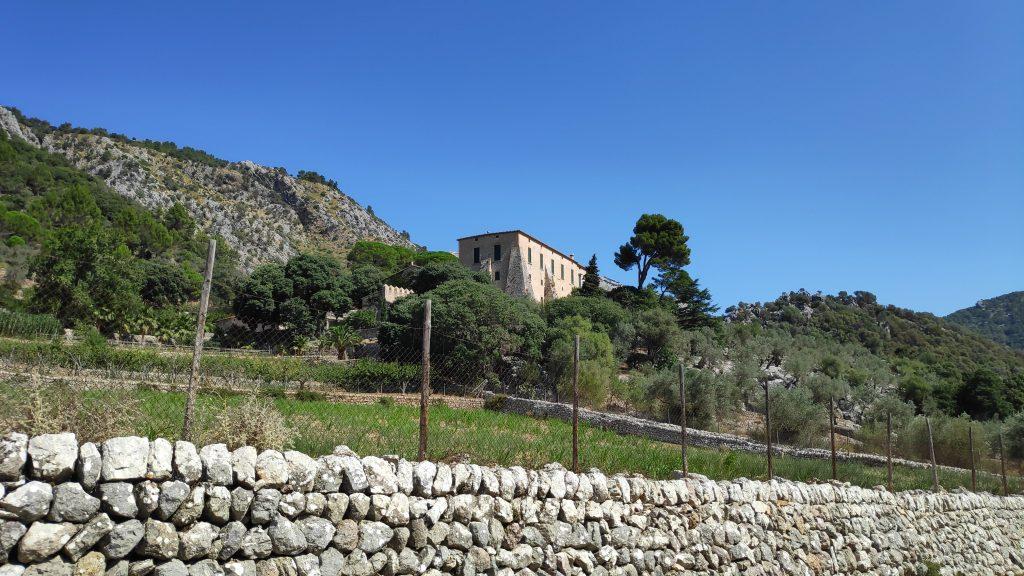 Comassema en la Ruta Puig de Sa Font Seca desde Orient