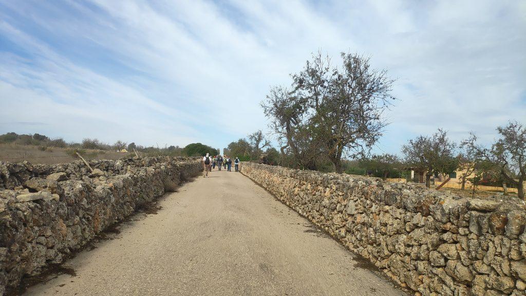 Ruta Santa Margalida y sus caminos