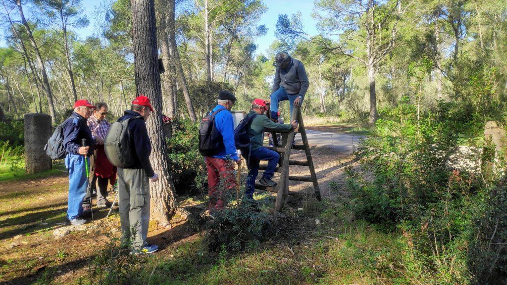 Ruta Lloret de Vista Alegre-2