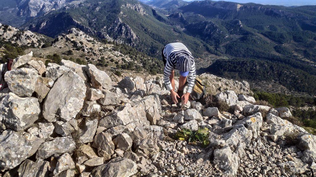 Puig de Sa Font desde Valldemossa
