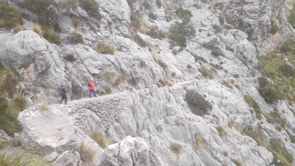 Vuelta al Puig Caragoler y Puig de ses Moles