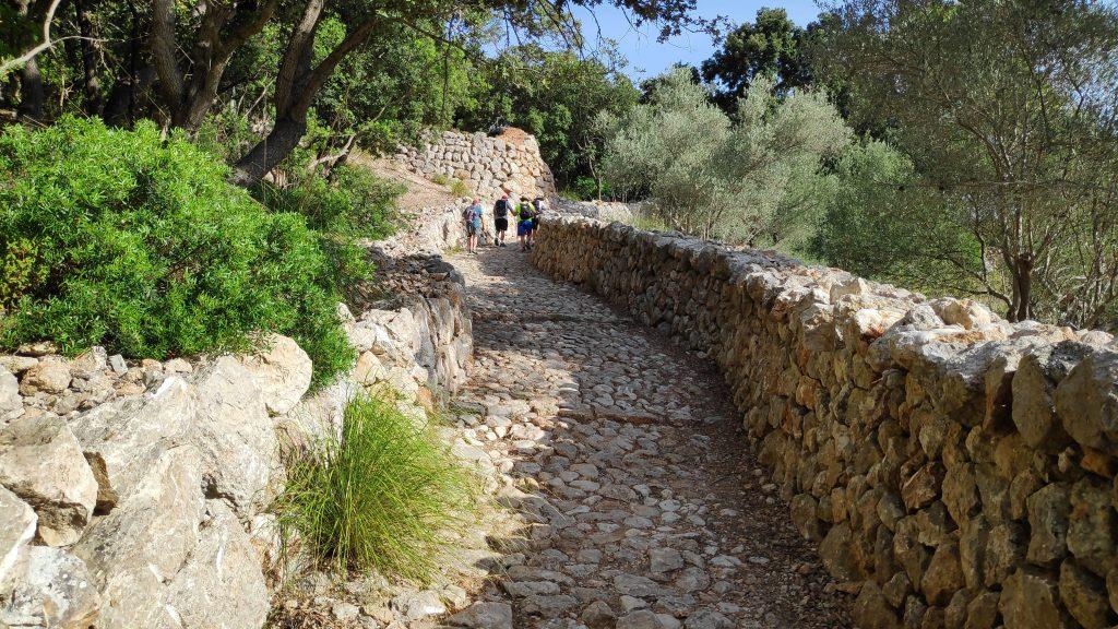 Camí del Correu de la ruta Sa Mola de Planicia desde la Granja