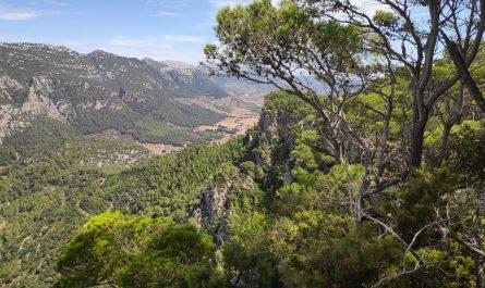 Valle de Orient visto desde Es Pico