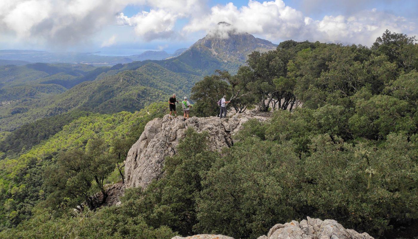 Puig de Galatzó visto desde el Puntals de Planicia
