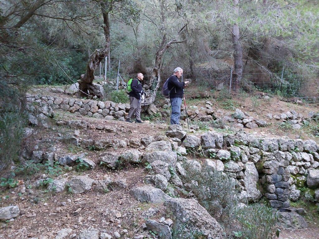 Font de Sa Senyora en la Ruta Puig de Sa Galera