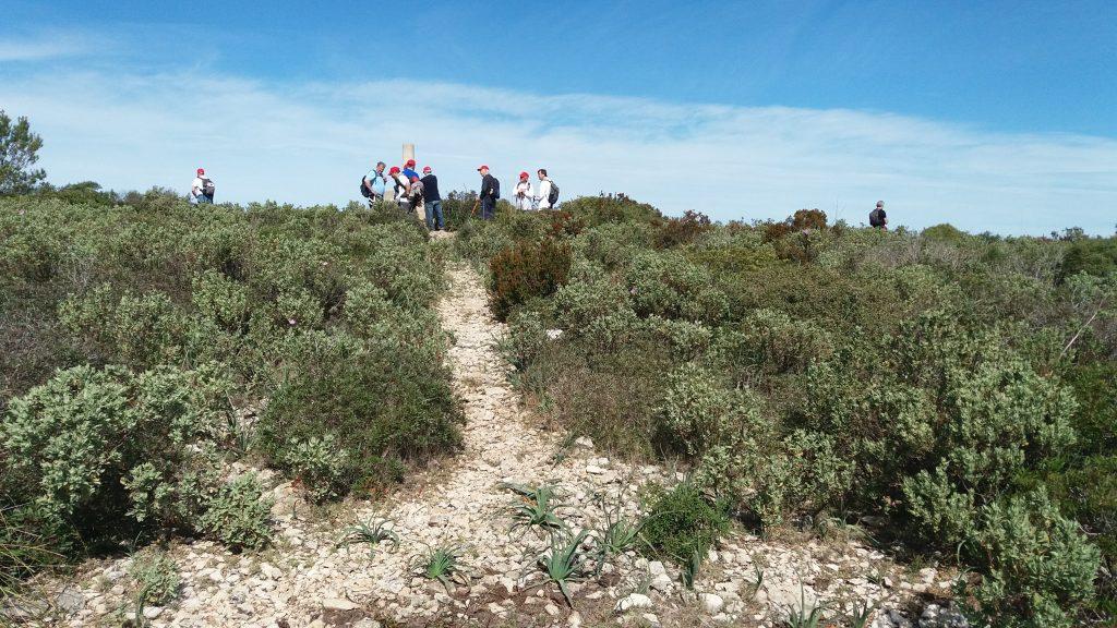 Cima del Puig Gros de Bendinat en la Ruta Puig Gros de Bendinat