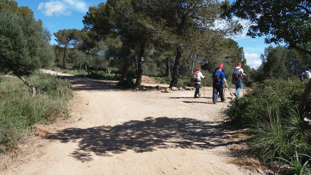 Coll des Pastors en la Ruta Puig Gros de Bendinat