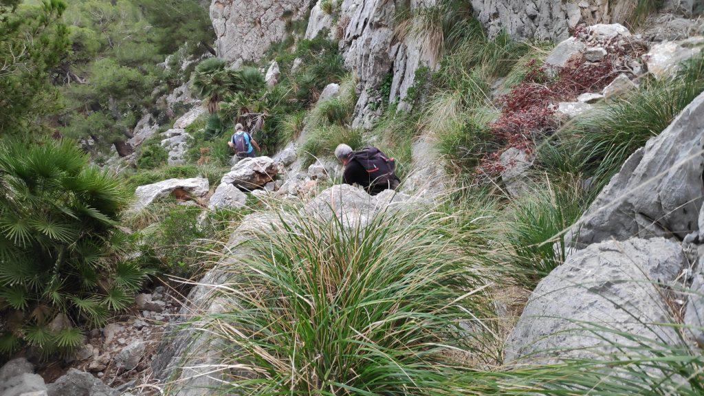 Descendiendo por el torrente en la Ruta Cap de Catalunya-Pal de Formentor