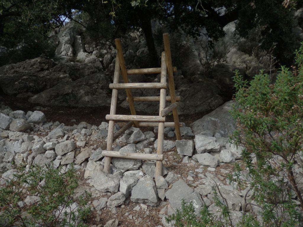 Botador en la ruta Ses Figueroles y el Valle de Alcanella