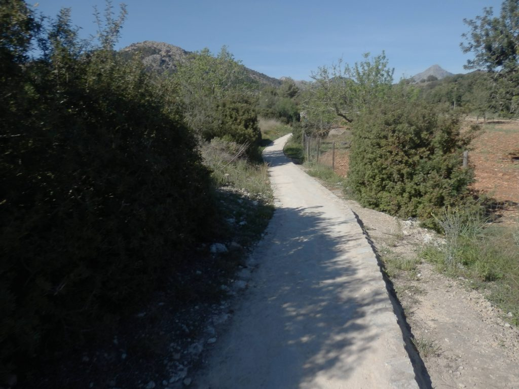 Camino GR en la Ruta Peguera - Es Capdellá 2
