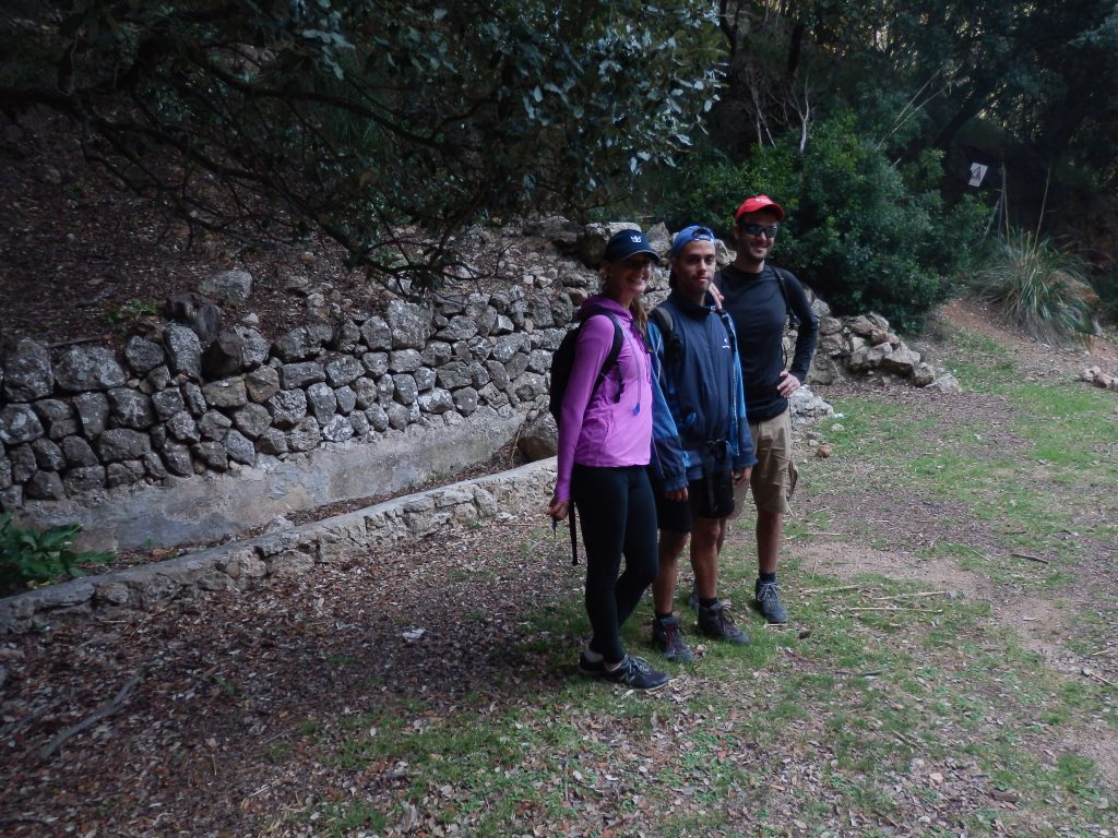 Font des Pi en la ruta Puig de Galatzó-Pas des Ratxo