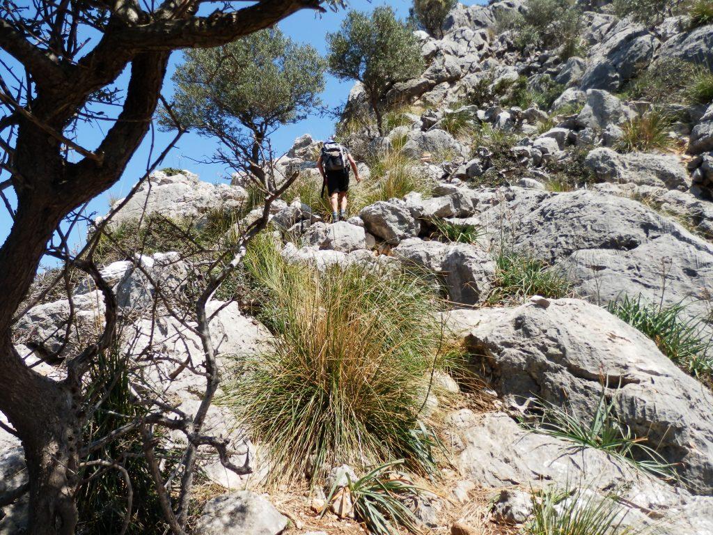 Subiendo por la Ruta Puig de Na Fátima