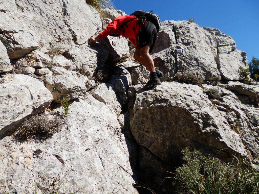 Roquedal en la ruta Puig de Galatzó por la Siquia des Ratxo