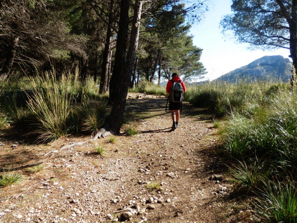 Ses Planes en la ruta Puig de Galatzó por la Siquia des Ratxo