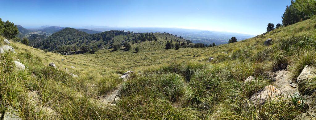 Camino de la Ruta Puig d'en Costurerer