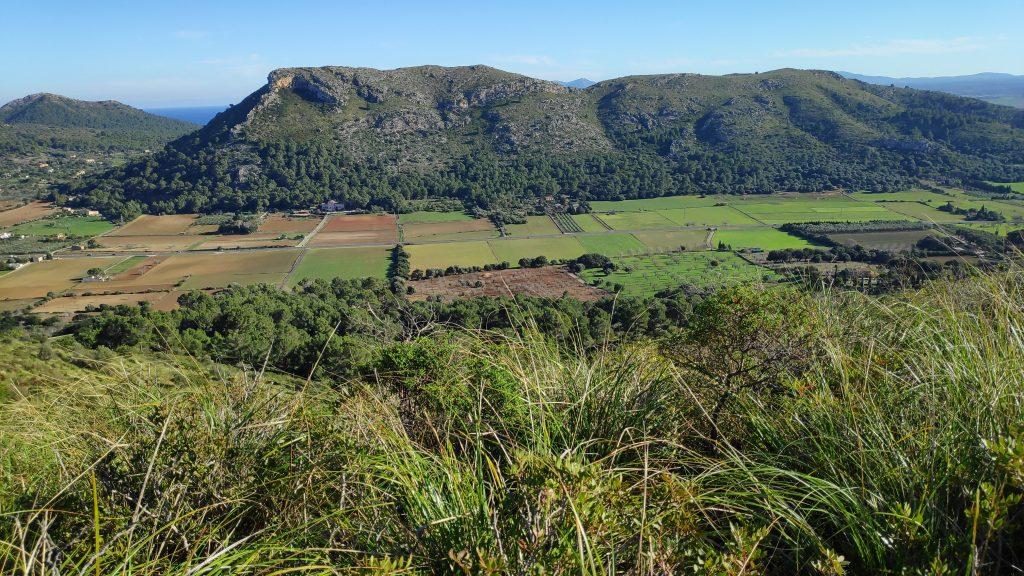 Macizo del Puig de Son Fe desde la Ruta Puig de Son Fe-Ses Covasses
