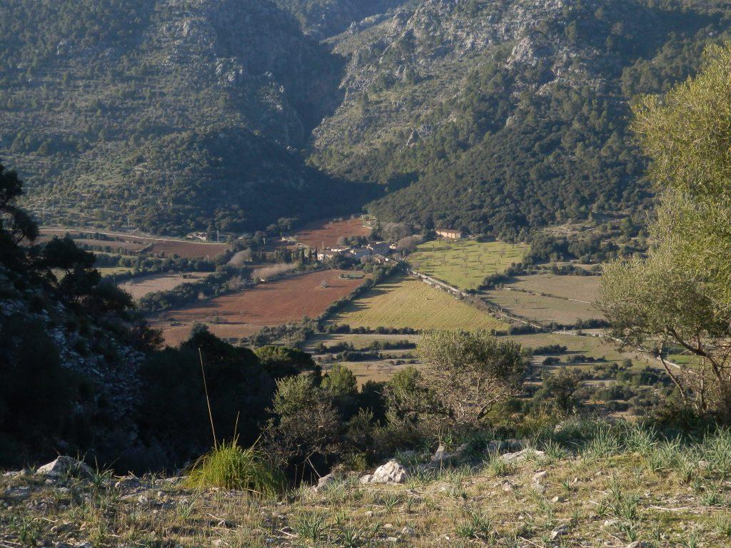 Biniarroi-Camí de ses Cases Noves