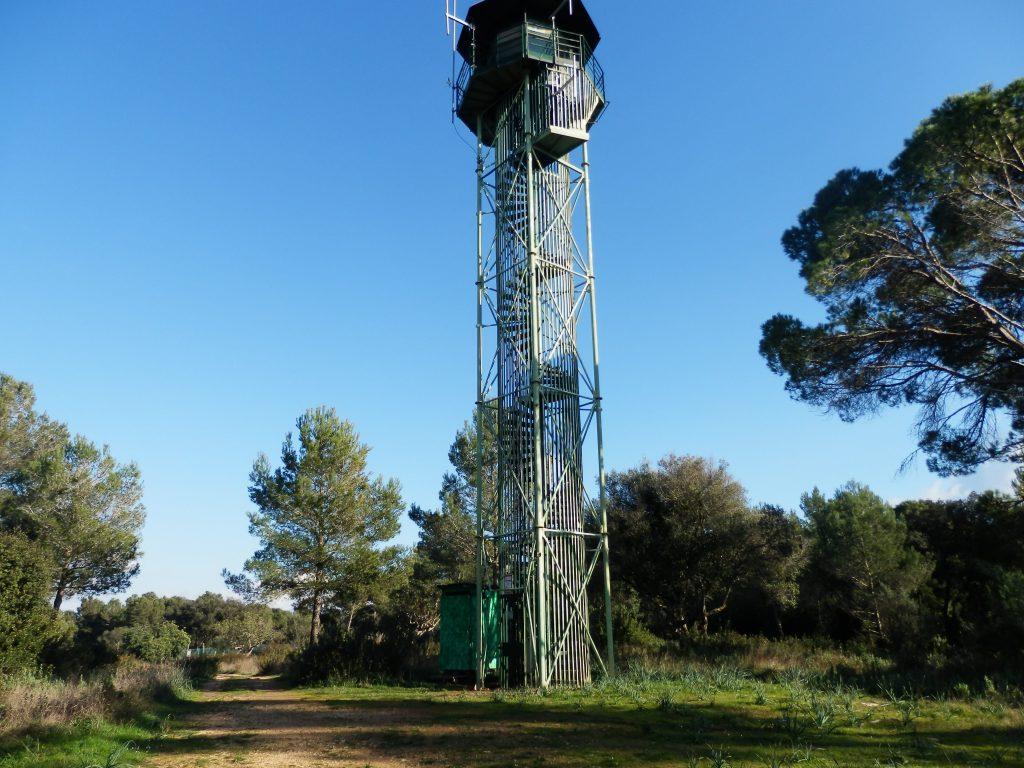 Puig de Son Seguí desde Pórtol