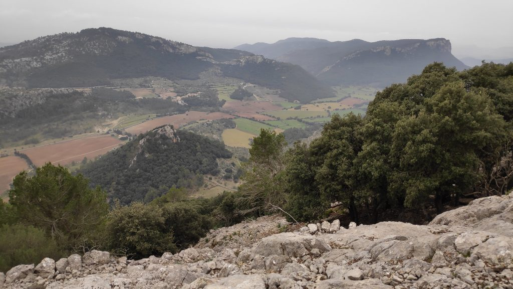Puig del Coll del Jou desde Orient