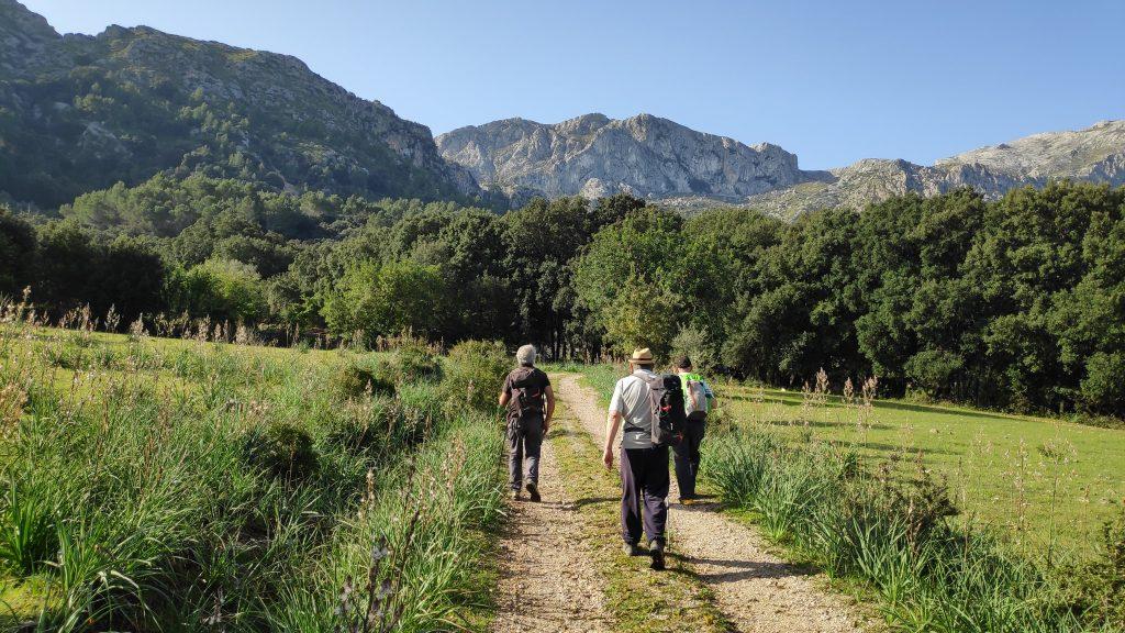 PUIG DE CA MINER por el Camino del Ninot