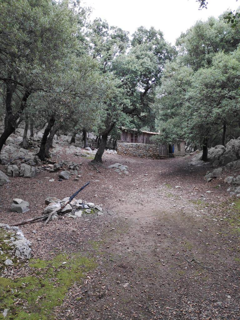 Puig del Coll del Jou-Pas de la María