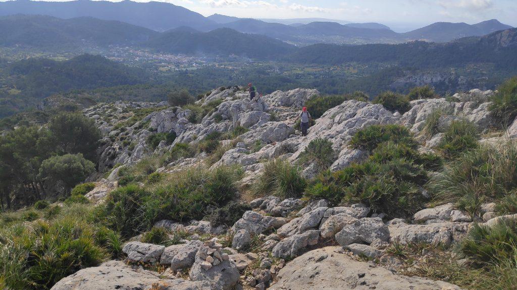 Puig d'en Farineta desde s'Arracó