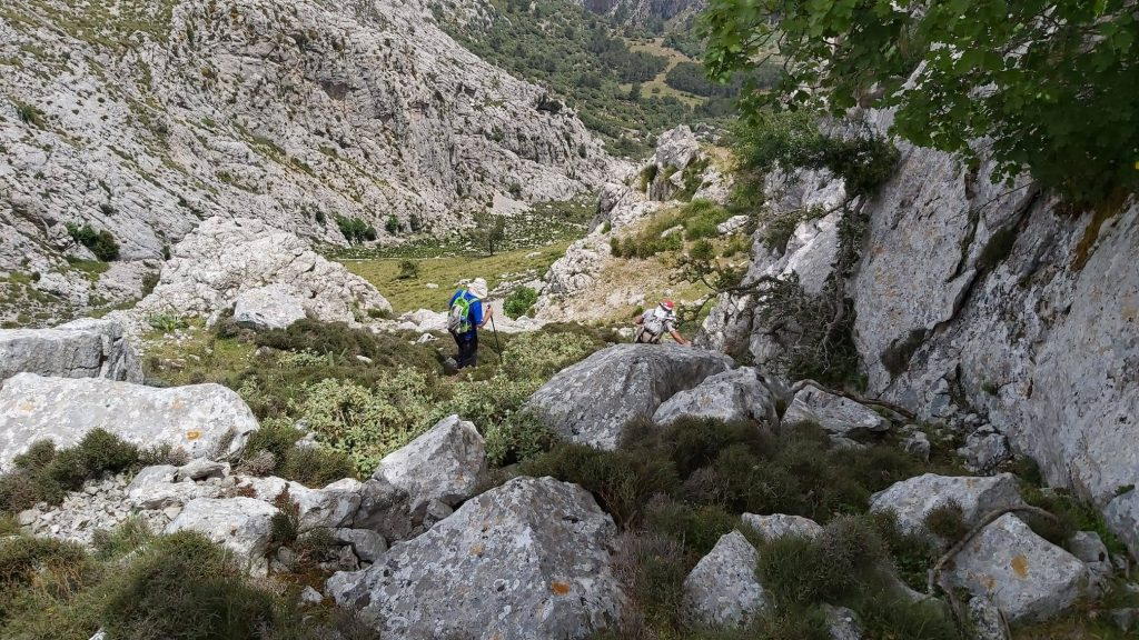 Puig del Coll del Jou desde el Túnel-Monnàber