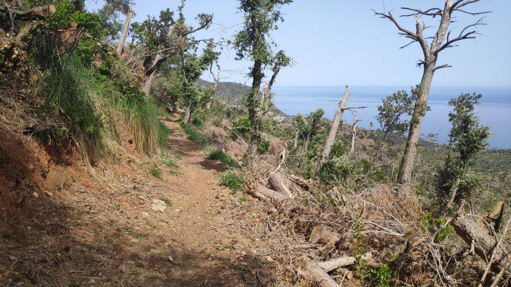 Esporles - Port del Canonge - Banyalbufar