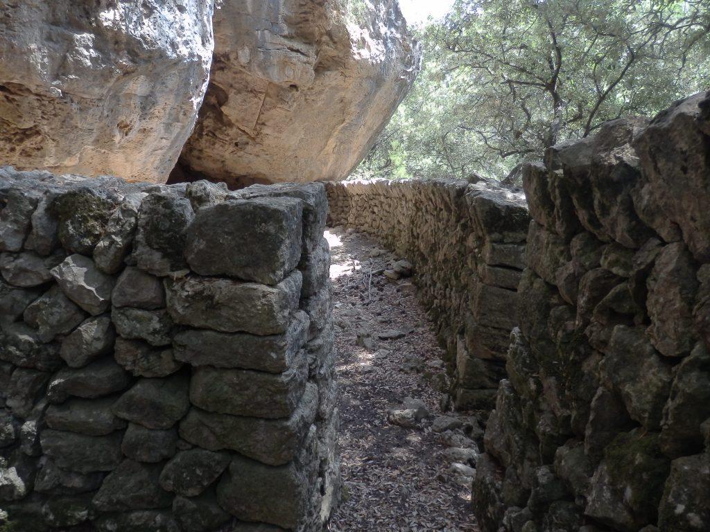 Coll de Estellencs-Cruilla de la Costitxa desde Puigpunyent