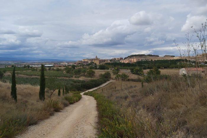CAMINO DE SANTIAGO-Etapa 7: Los Arcos-Logroño